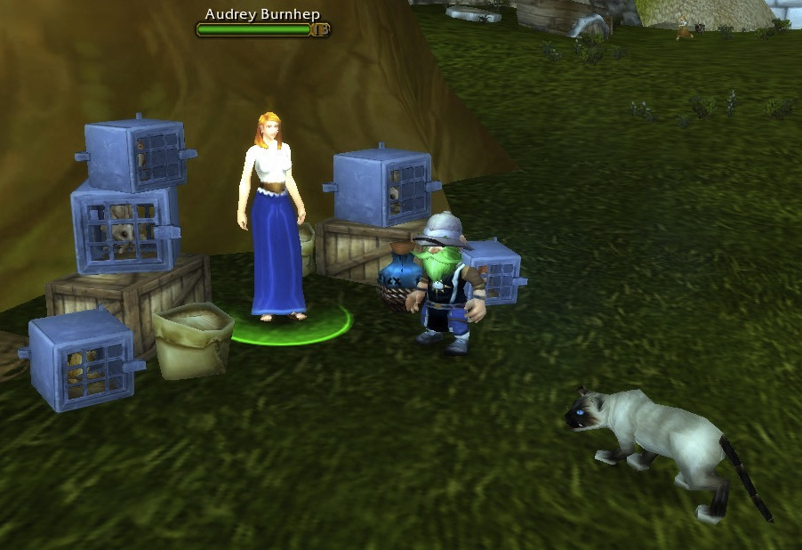 Stormwind Pet Trainer